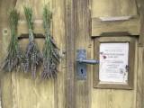 Dveře do kostela sv_ Prokopa s plakátem a levandul