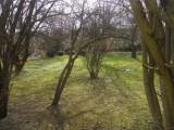 Jarní_zahrada