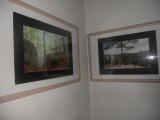 Výstava12