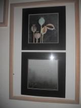 Výstava4