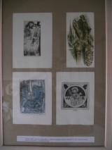 výstava6