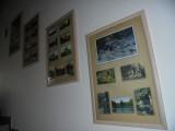 výstava hrad Kost14.jpg